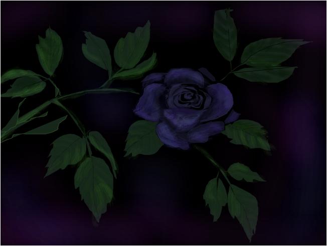The Dark Rose #2
