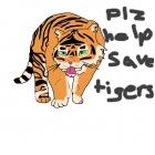 plz help save tigers!!