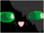 please dont leave hollyleaf :D