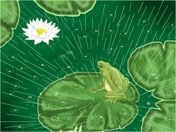 Lotus and the Frog