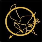 Hunger Games - Katniss's Pin